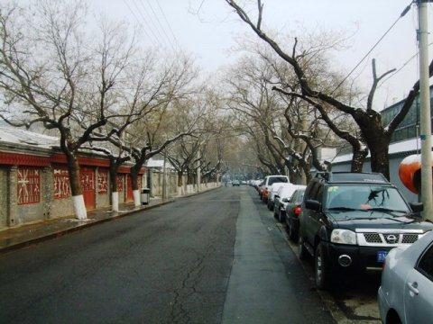 2010北京博物館散步